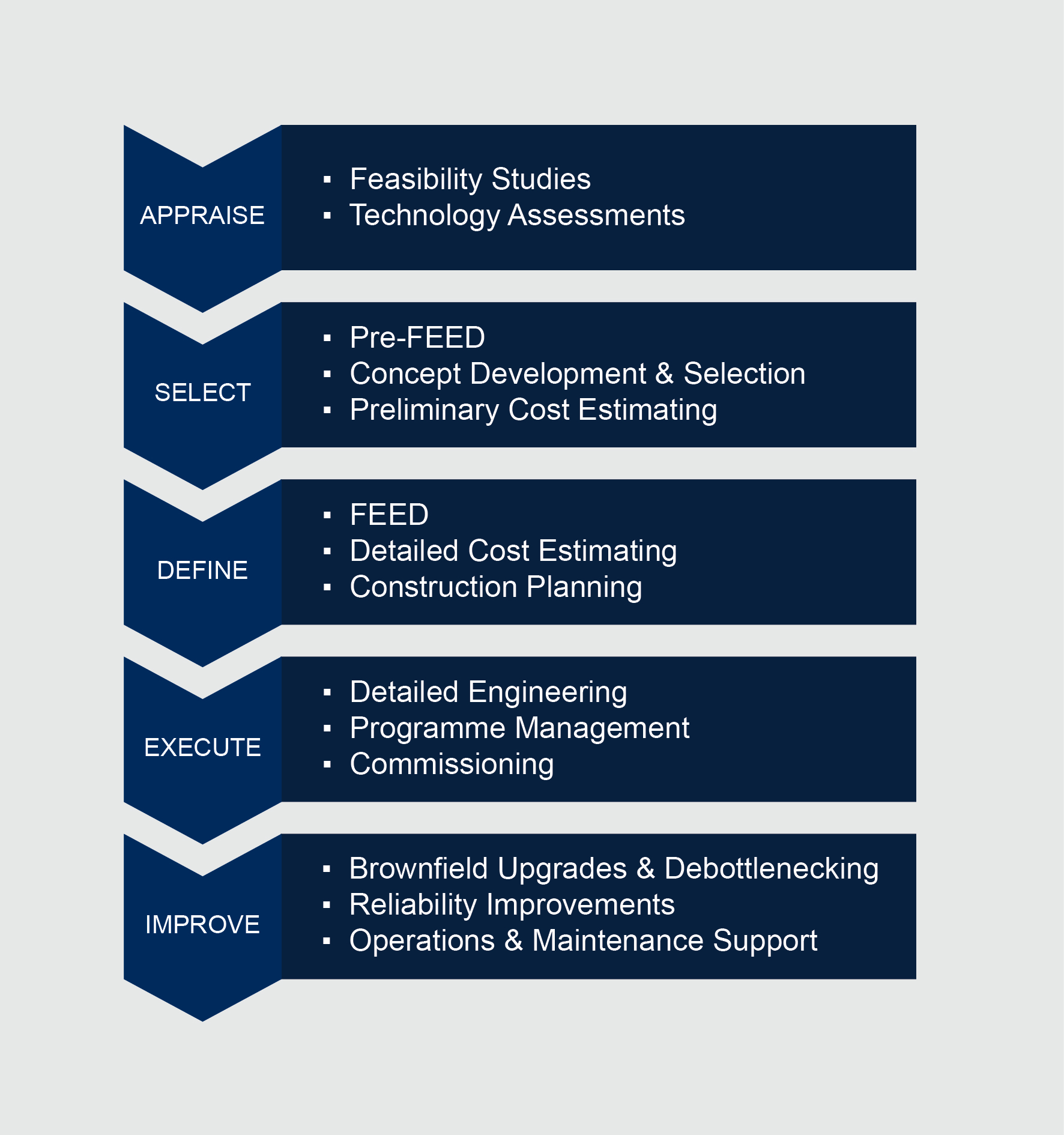 Appraise Select Define Execute Improve Project Lifecycle